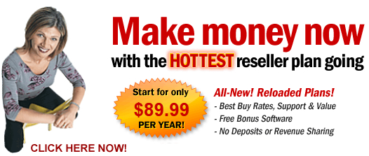 Become_a_domain_reseller_All_Pro_Computer_Innovative_Design
